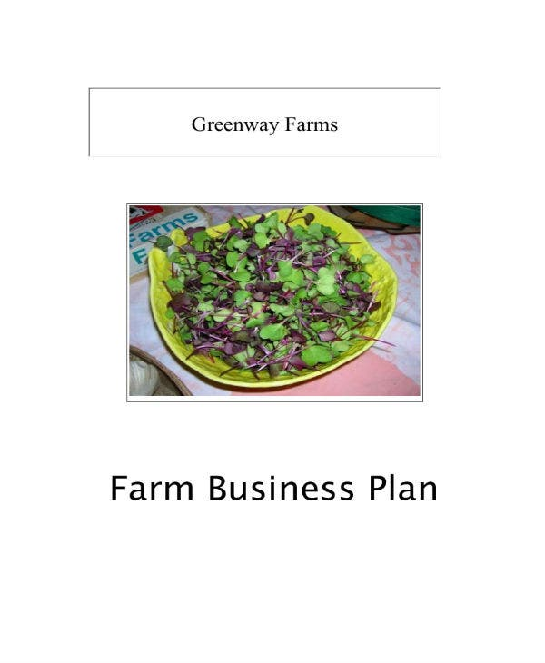 farm business plan case study 01