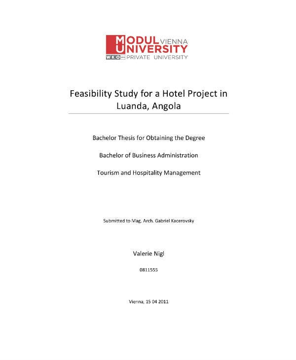 feasibility study and hotel business plan sample