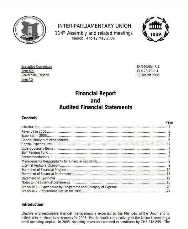 financial statements audit report