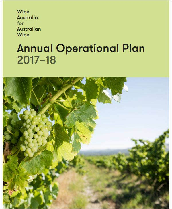it annual operational plan