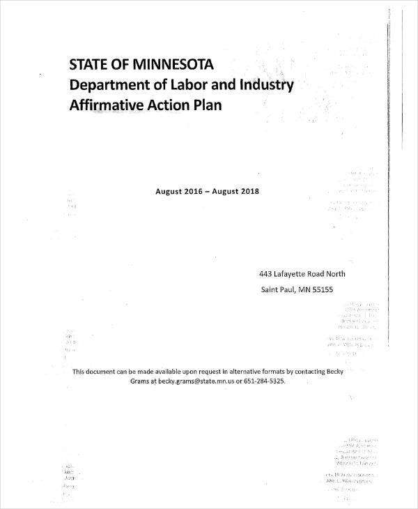 Industry Affirmative Action Plan Sample