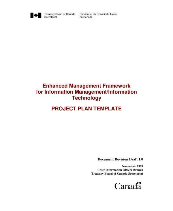 information management or information technology project plan template