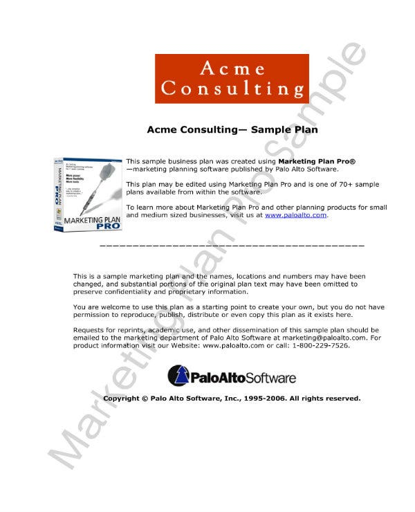 marketing consulting project plan 01