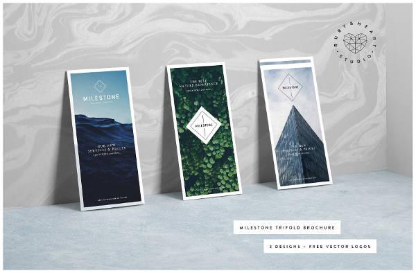 Multi-Use Trifold Brochure Template