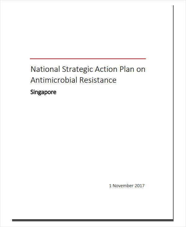 national strategic action plan