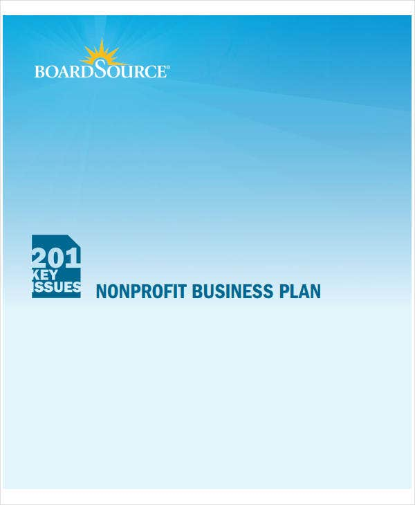 nonprofit project plan example