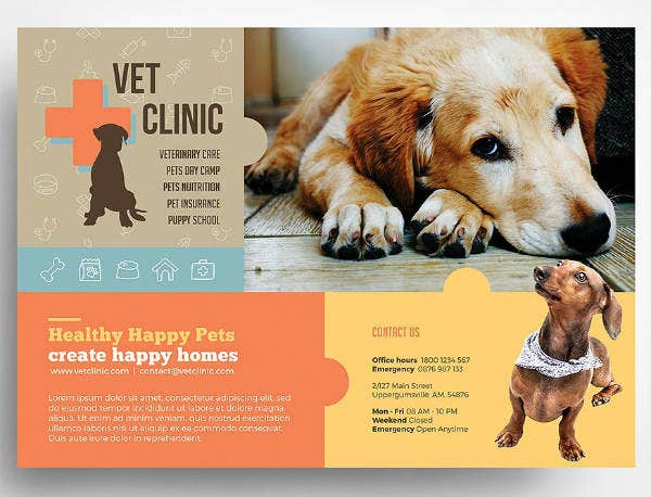 pet clinic flyer design