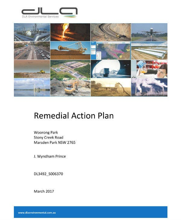 precinct remedial action plan