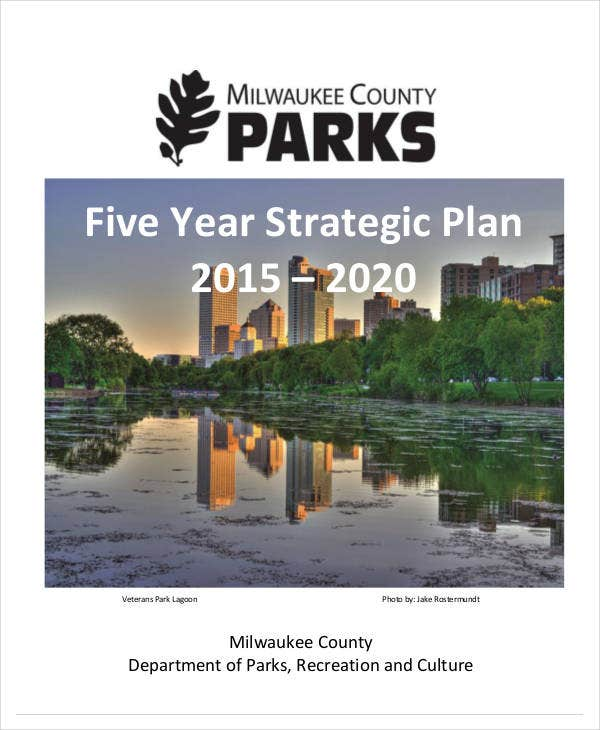 5 year plan template pdf