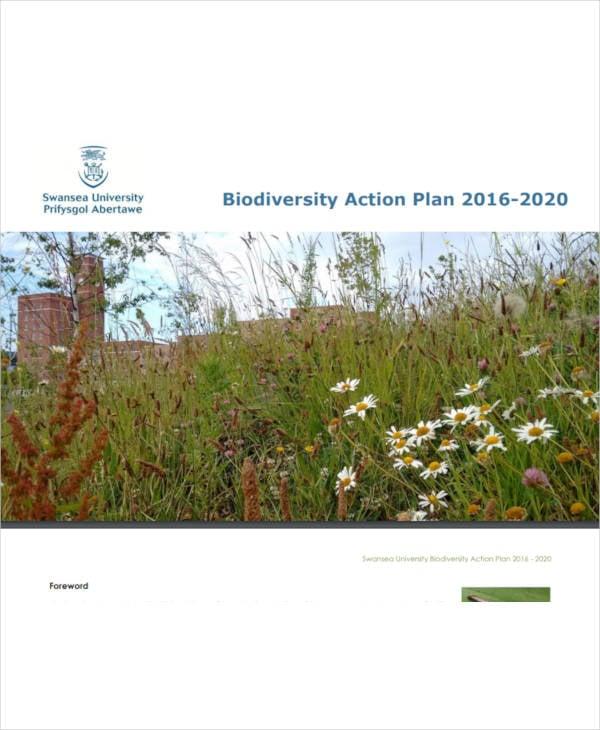 printable biodiversity action plan