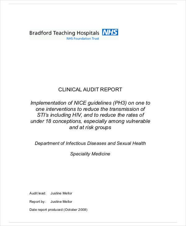 printable clinical audit report