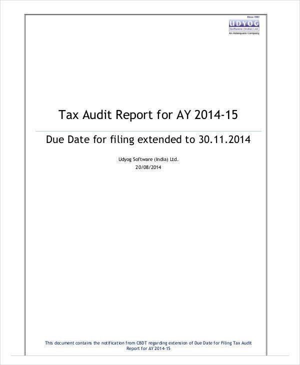 printable tax audit report