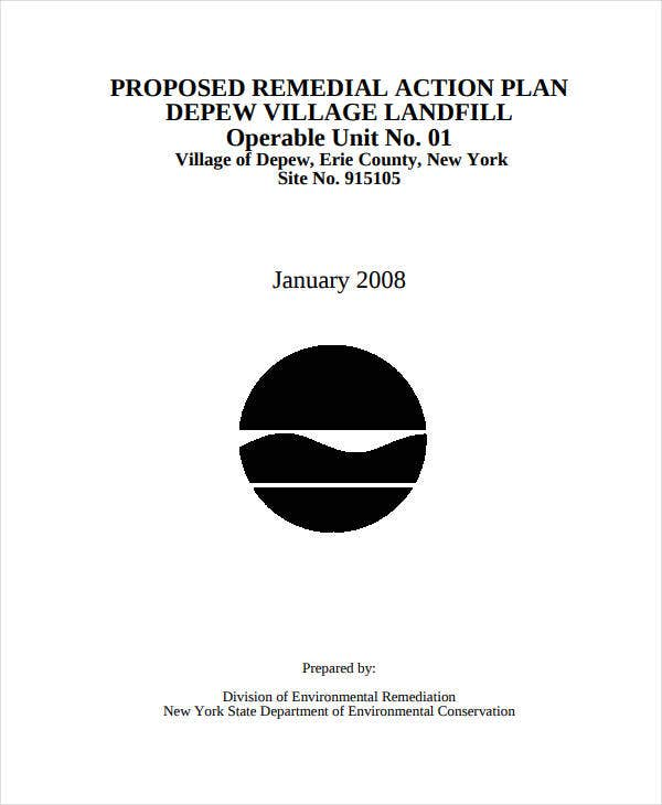 proposed remedial action plan