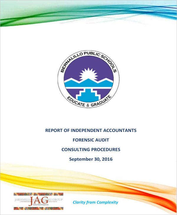 Report on Forensic Audit Consulting Procedures