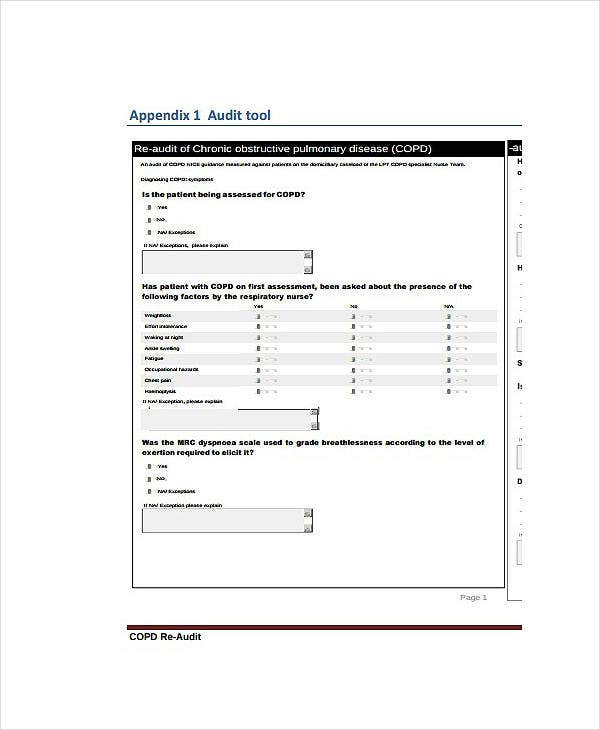 Sample Clinical Audit Report Template