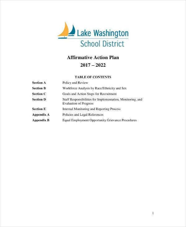 School District Affirmative Action Plan Sample