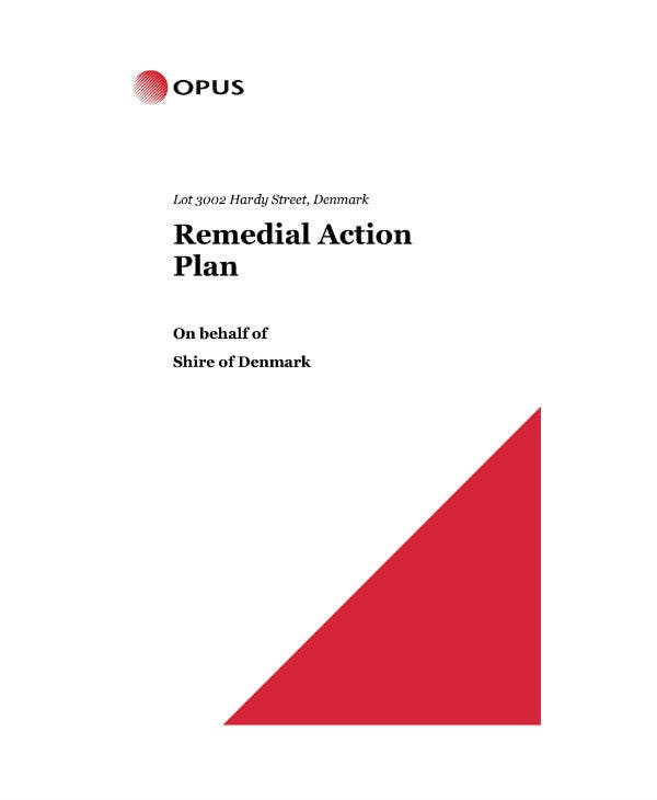 shire remedial action plan sample