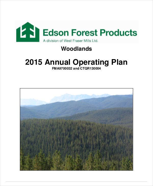 simple annual operating plan