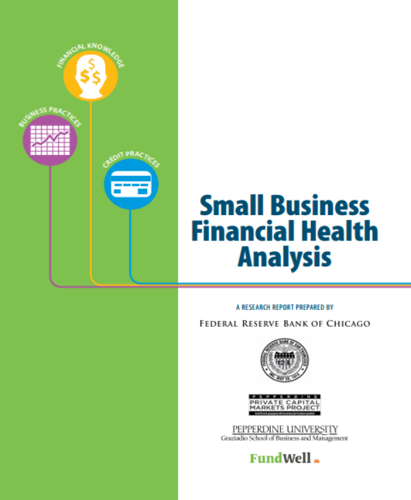 small business financial health analysis