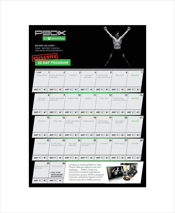 standard 30 day workout plan