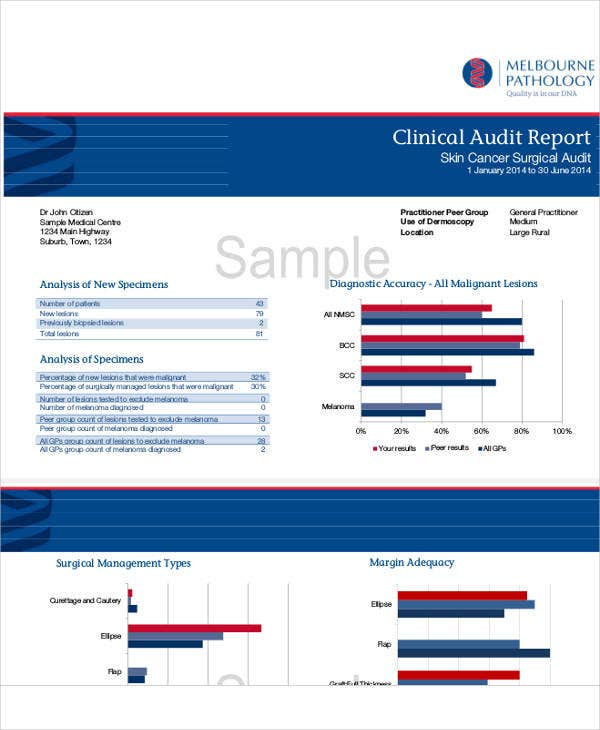 standard clinical audit report template
