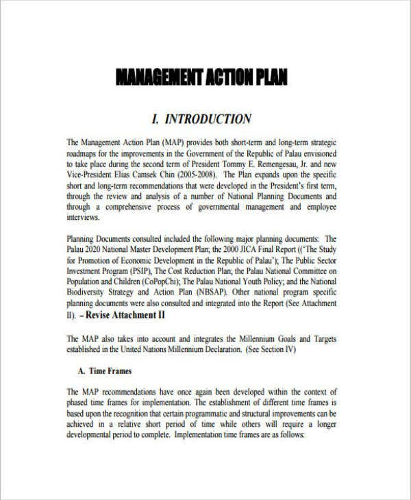Strategic Management Action Plan