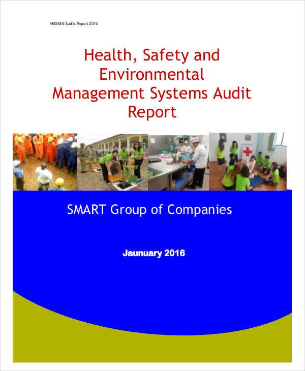systems audit report example