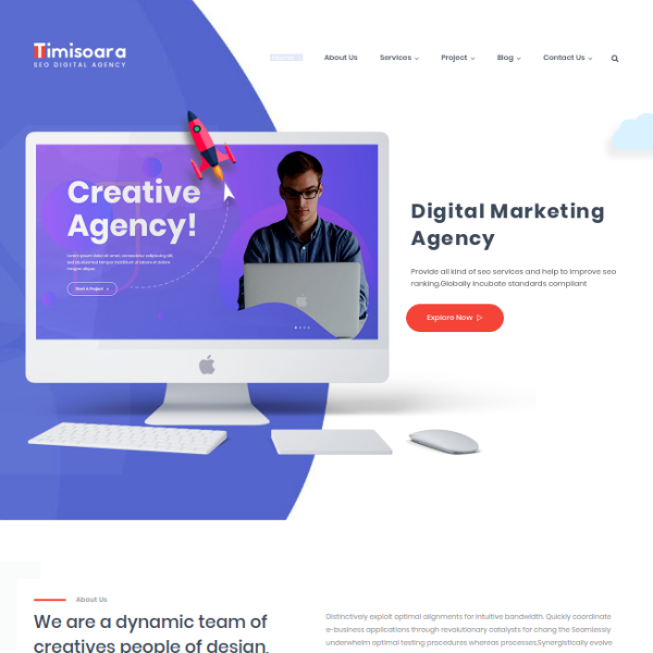 Timisoara SEO Digital Agency Website