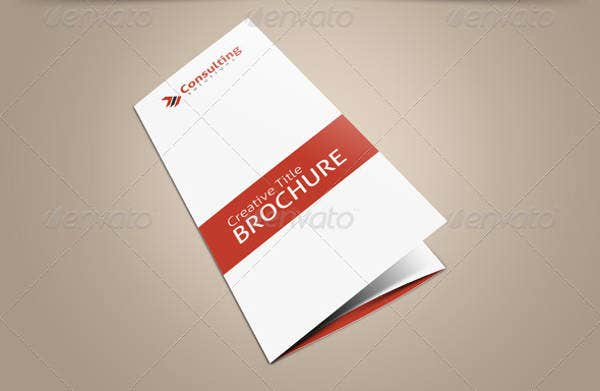 Tri-Fold Consultation Brochure