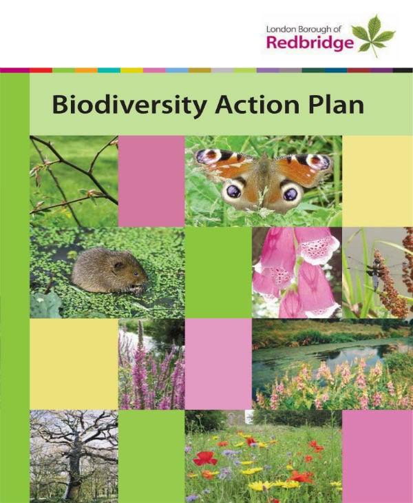 biodiversity action plan 01