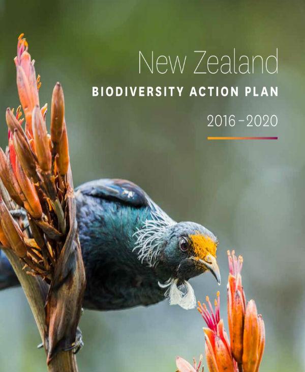 new zealand biodiversity action plan 01
