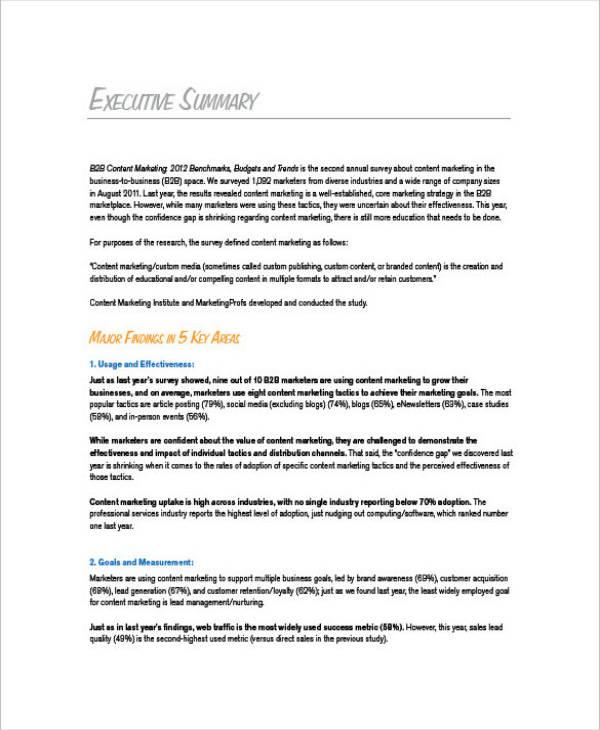 b2b executive summary marketing plan