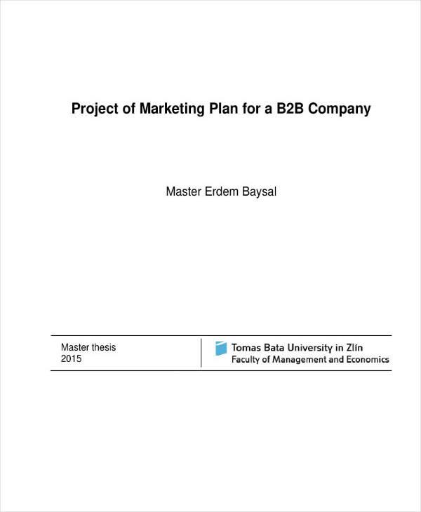 B2B Marketing and Business Plan