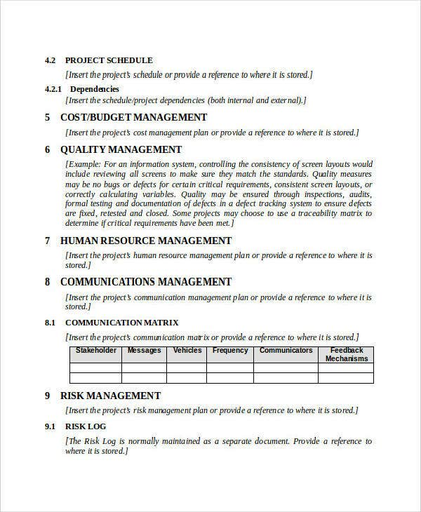 Business Project Management Plan Sample