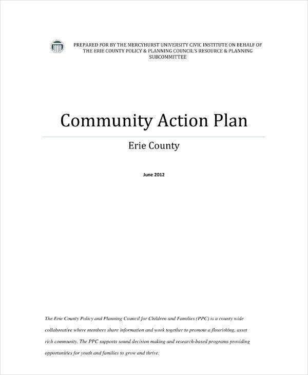 Community Action Plan Sample