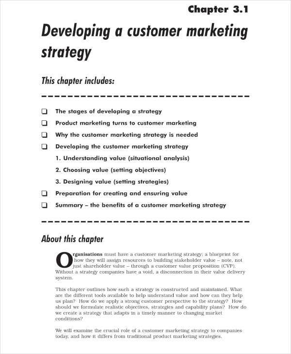 Customer Marketing Strategy Business Plan