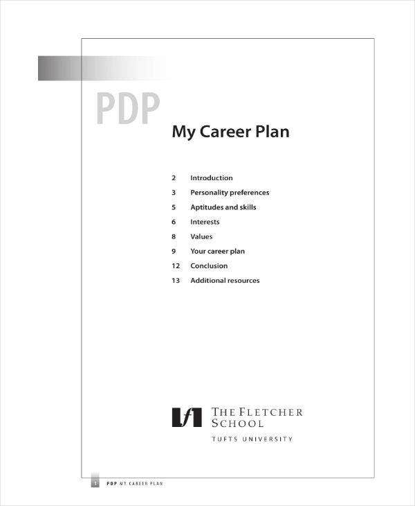 Development Plan for Career