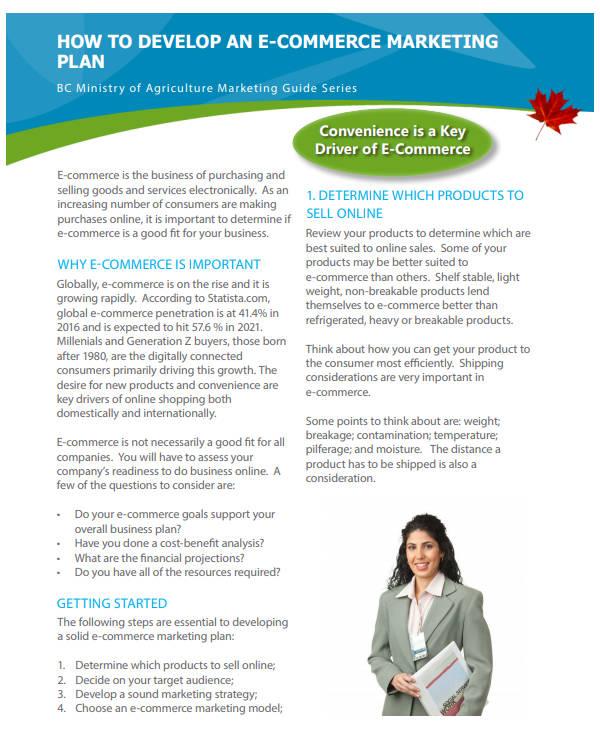 free e commerce marketing strategies plan