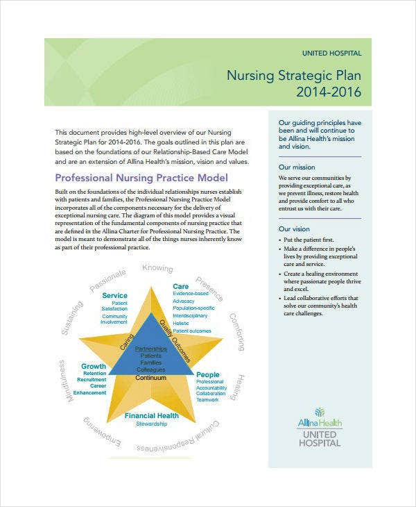 Professional Nursing Strategic Plan