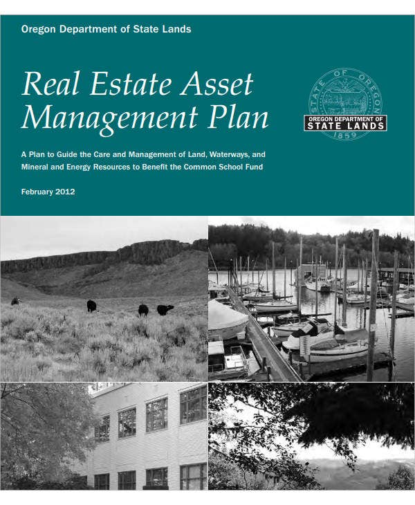 real estate asset management plan