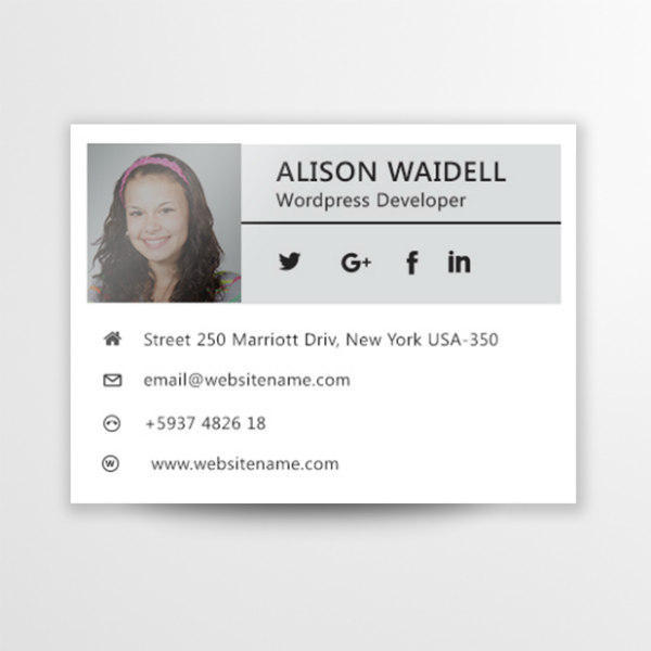 WordPress Developer Email Signature Template