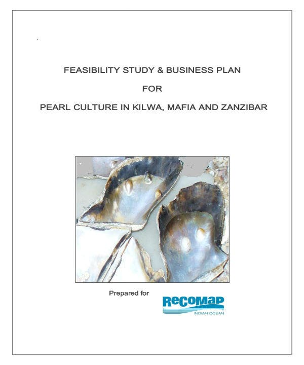 business plan for pearl culture 0011