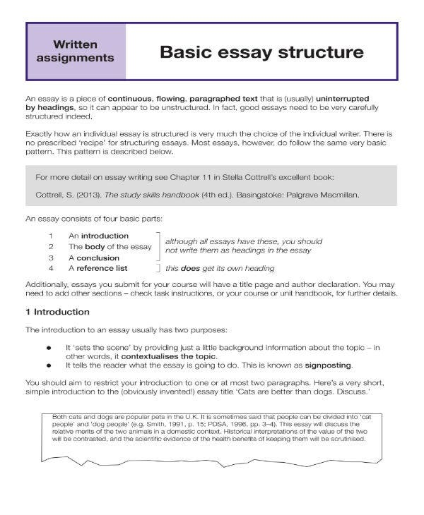 basic essay structure 1