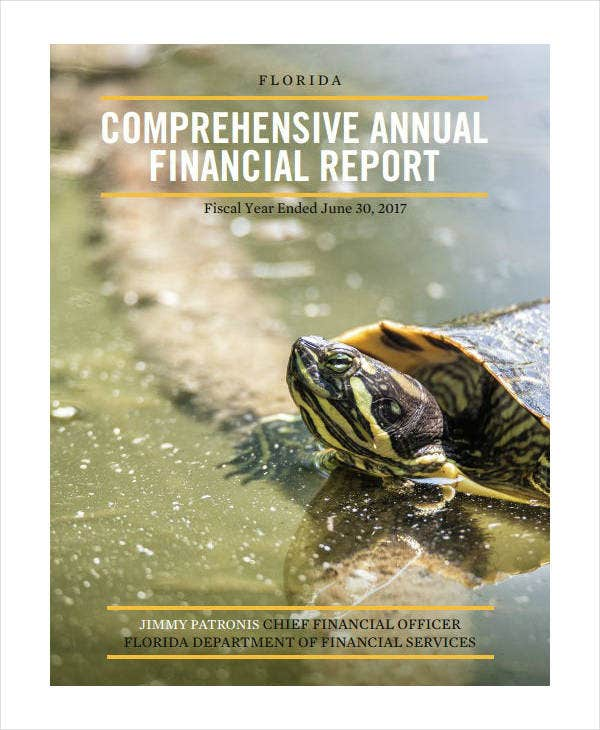 Fiscal Year Comprehensive Annual Financial Report
