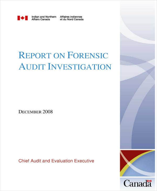 Forensic Audit Investigation Report