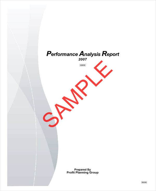 Sample Performance Analysis Report