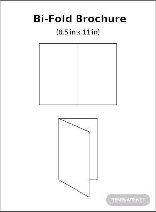 Bi-Fold Brochure Infographic