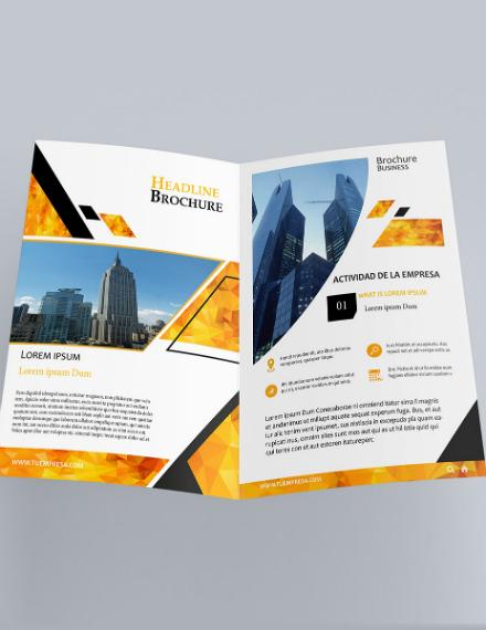 Business Profile Bifold Brochure Example
