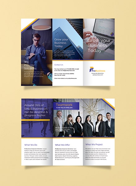 Corporate Business Trifold Brochure Sample