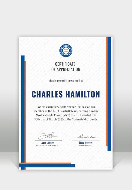 Free Sports Appreciation Certificate Template 440x632